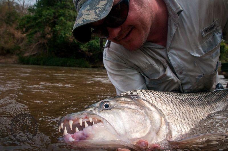tanzania fishing
